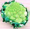 Biodynamisk romanesco broccoli