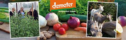 biodynamisk jordbrug